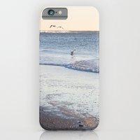Birdy Beach  iPhone 6 Slim Case