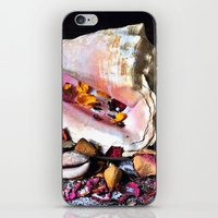 Maritime Symphony  with Sea Shells and Roses iPhone & iPod Skin