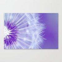 Purple Dandelion Canvas Print