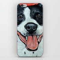 Black & White Adorable Pit Bull  iPhone & iPod Skin