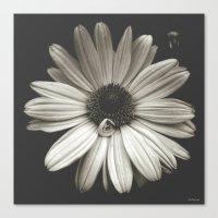 elegant flower  Canvas Print