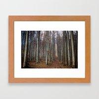 Autumn Hike Framed Art Print