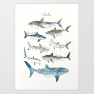 Art Print featuring Sharks by Amy Hamilton