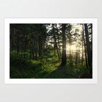 Entering Narnia Art Print
