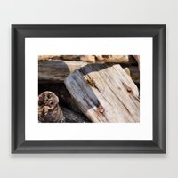Yellow-Jacket Framed Art Print