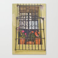 Canvas Print featuring Pretty window in Mexico by Jaime Lynn Photography