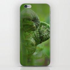 Spring Unfolding II iPhone & iPod Skin
