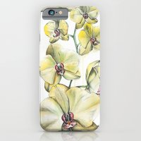 Yellow Orchid iPhone 6 Slim Case