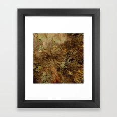 Dehiscence 1 Framed Art Print