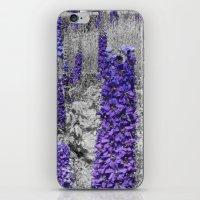 Purple Balboa iPhone & iPod Skin