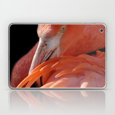 Cuban Flamingo Grooming Laptop & iPad Skin