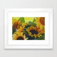 California Sunflowers Framed Art Print