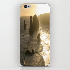 Evolutionary history of life on Earth  iPhone & iPod Skin