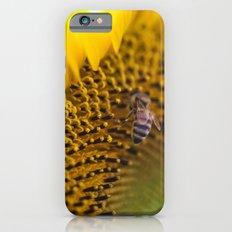 Busy Bee - Sunflower Macro iPhone 6 Slim Case