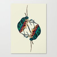 insects:love 01 Canvas Print