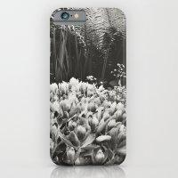 Secret Garden iPhone 6 Slim Case