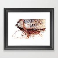CoCo Sideways Framed Art Print