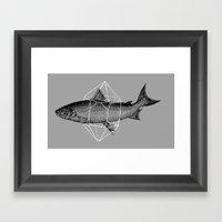 Fish In Geometrics Framed Art Print