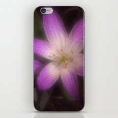 A little bit of Spring iPhone & iPod Skin