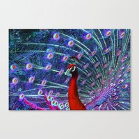 A Different Kind Of Peac… Canvas Print