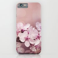 cherry blossom iPhone & iPod Cases featuring Cherry Blossom by LebensART Photography
