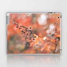 Autumn Berries Laptop & iPad Skin
