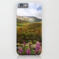 Fireweed Valley Alaska - Mountian Landscape iPhone 6 Slim Case