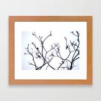 B I R D S. Framed Art Print