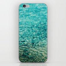 Crystal Clear iPhone & iPod Skin