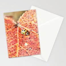 Lady on the Run Stationery Cards