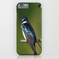Barn Swallow iPhone 6 Slim Case