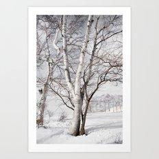 Snowy Dark Trees Art Print