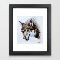 Heterocromia wolf Framed Art Print