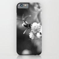 Flowering Almond In Blac… iPhone 6 Slim Case