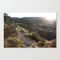 Evening Trail 2 Canvas Print