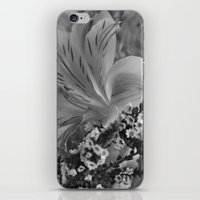 Freesia 2 B&W iPhone & iPod Skin