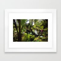 Climbing the Garden Framed Art Print