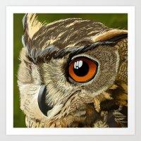 Eurasian Eagle Owl Art Print