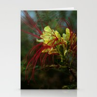 Spidery Red Stationery Cards