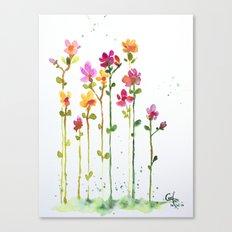 my pretties 1 Canvas Print