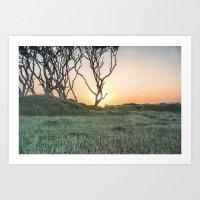 Barrier Island Sunrise II Art Print