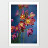 Pink in Spring Art Print