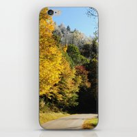 Down This Road iPhone & iPod Skin