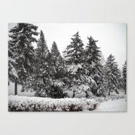 Canvas Print featuring Winter by Vitta