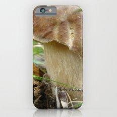 Wild mushroom (Boletus edulis, porcini) iPhone 6 Slim Case