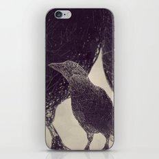 Mr Magpie iPhone & iPod Skin
