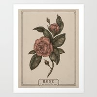 roses Art Prints featuring Roses by Jessica Roux