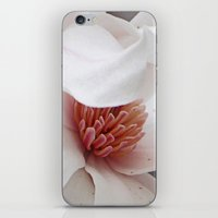 Magnolia Bloom iPhone & iPod Skin