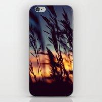 Prairie Skies iPhone & iPod Skin