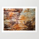 NATURAL WOOD ART Art Print